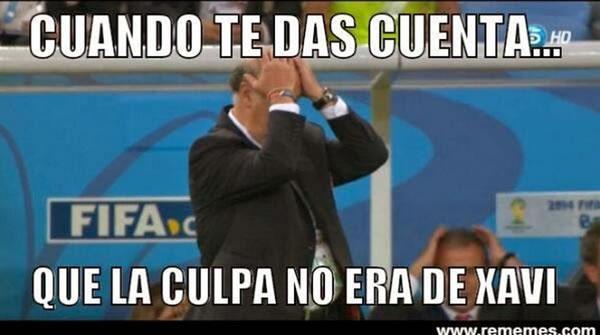 memes eliminacion espana mundial 2014 - 18