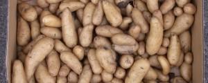 truco para pelar patatas