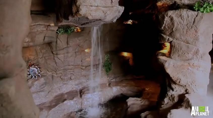 piscina mas cara del mundo - cuevas