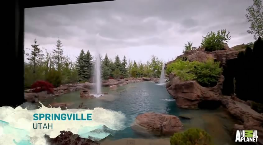 piscina mas cara del mundo - springville utah