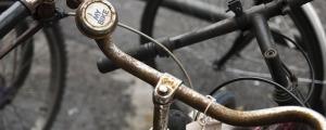 broma del timbre de bicicleta calles de japon