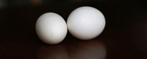 increible truco para pelar un huevo en un santiamen